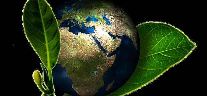 ISO 14001:2015 FDIS Published