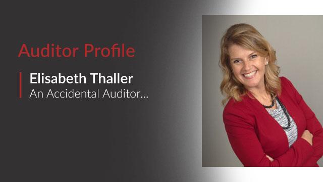 auditor profile