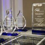 ANSI award winners
