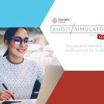 Audit Simulator